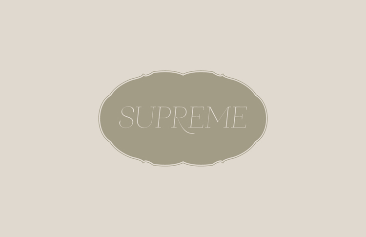 ceft-and-company-ny-agency-supreme-kits-ss10-portfolio-identity-design-750px-03