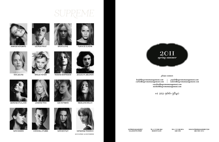 ceft-and-company-ny-agency-supreme-kits-ss10-portfolio-identity-design-750px-09
