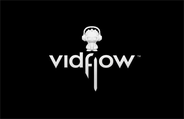 ceft-and-company-newyork-vidflow-bw