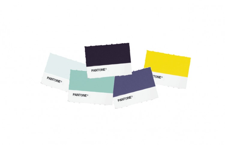 ceft-and-company-newyork-vidflow-pantone-color