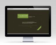 digital: bostawn website