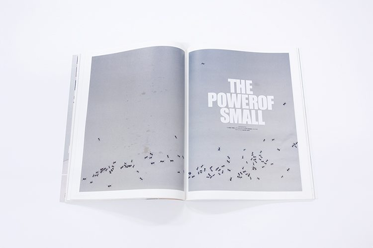 the-power-of-small-soma1
