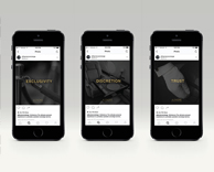 SOCIAL MEDIA/DIGITAL: ALFAONE CONCIERGE consulting