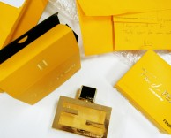 strategy/positioning: fan di fendi – the new fragrance by fendi
